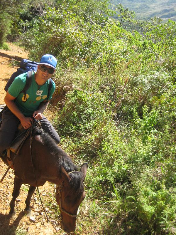 Santa Fe Kyler crushing horse
