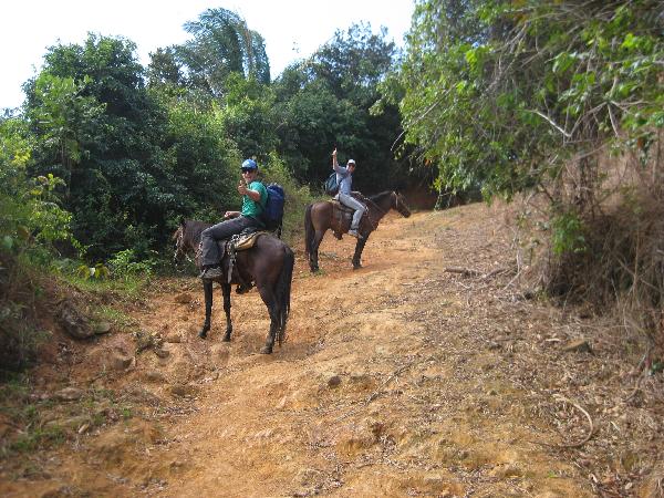 Santa Fe Kyler Todd horses
