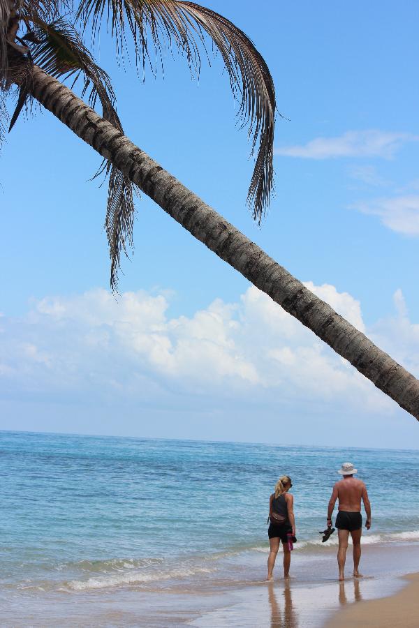 Siri pappa beach