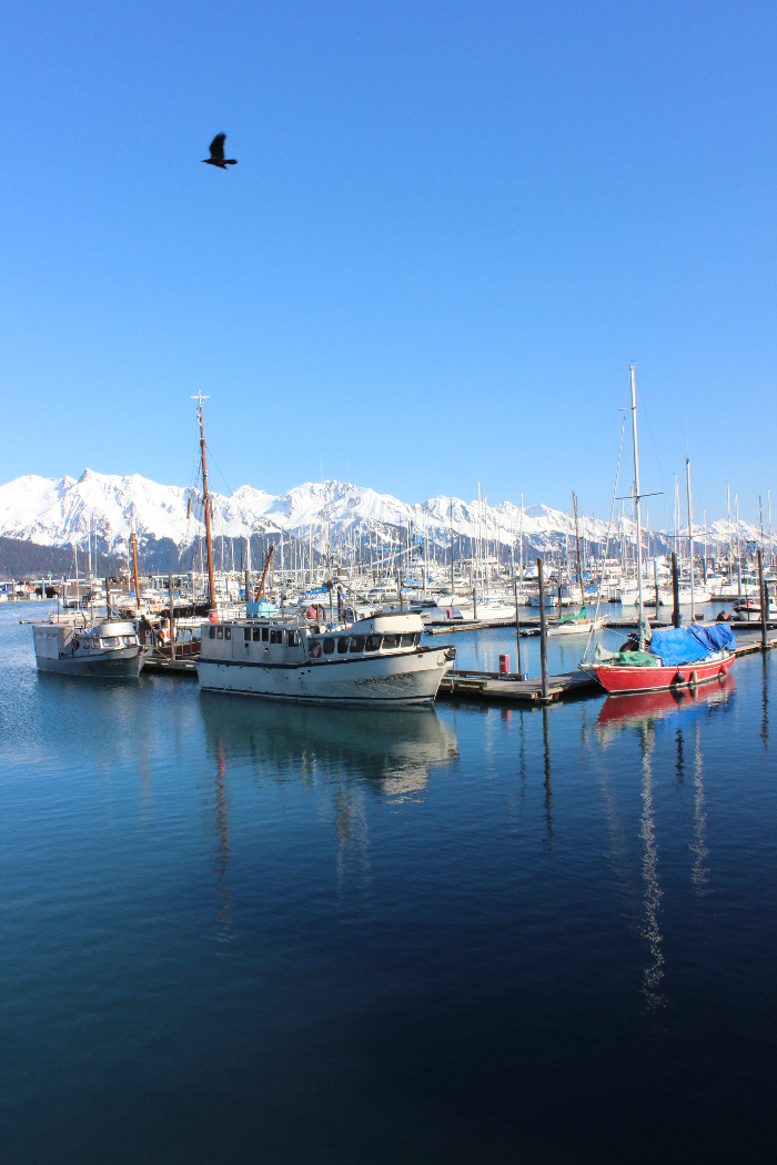 3.Seward Harbour